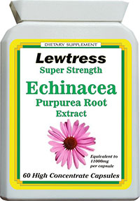 Echinacea Extract Super Strength (in vegetable capsules) 11000mg